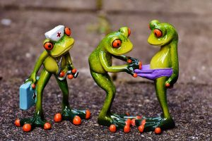 frogs-1672919_960_720